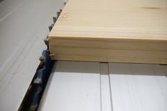 Kiefernholz liegt mit deutlichen Ausbrüchen auf einer Tischkreissäge mit sehr niedrig eingestellter Schnitthöhe